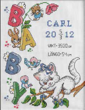 Carl Birth Sampler