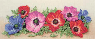 Spray Of Anemones
